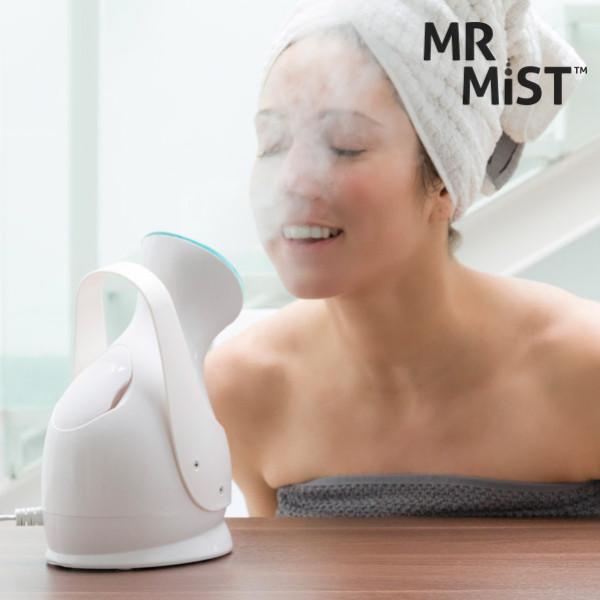 Ansiktsbastu Mr Mist Ionic Steamer från Inget märke