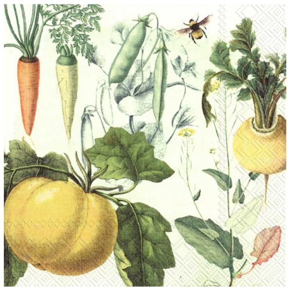 Ihr Servett Servetter Culinarix Herbs 33X33 Cm från Ihr