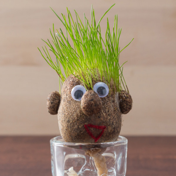 Inredning Växt Grass Head från Inget märke